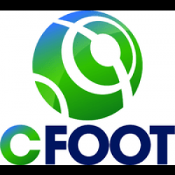 CFoot : Sound Post-Production training in an ISIS / Interplay Workflow with Pro Tools HD9 / Satellite Video / D-Command""